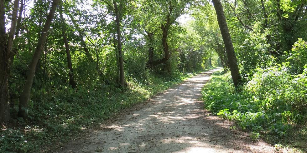 Pony Hollow Trail 15K Run