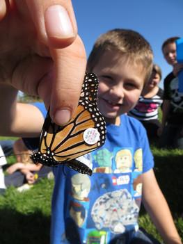 monarch tagging photo.jpeg