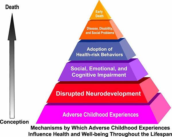 child experiences.jpg