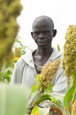 Sorghum farmer in the field