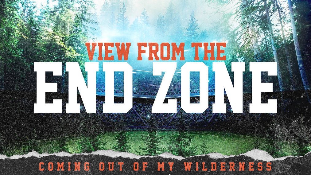 View from the endzone sermon graphic.JPG