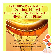 Pure-Honey-MGH.jpg