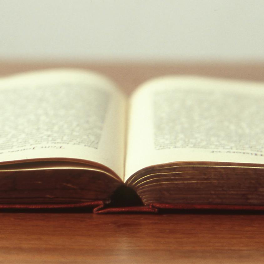 Aufbau und Botschaft des Danielbuchs (B. Knieß)