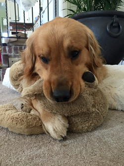 Wilson's quiet time