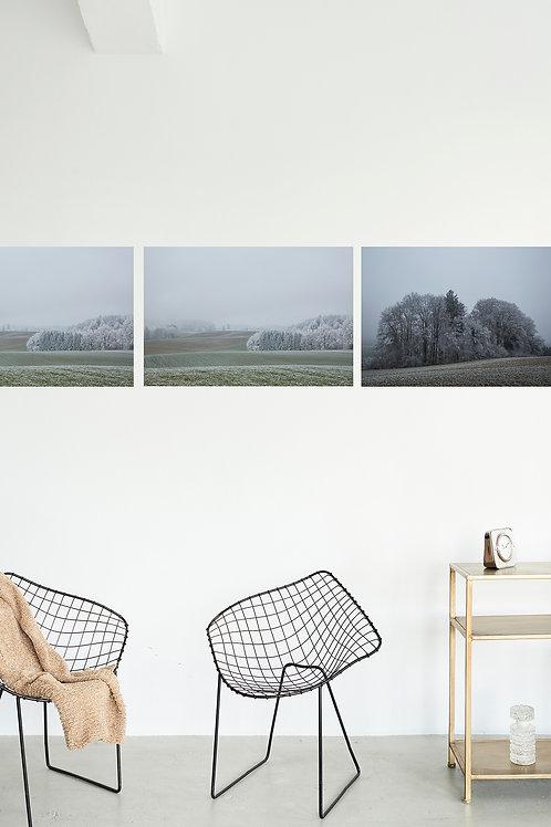 3er Serie Winter / pro Bild Fr. 780.00