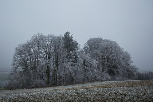 kalte Landschaft