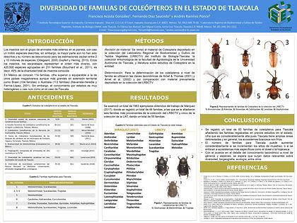Coleópteros Escarabajos de Tlaxcala