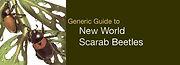 generic guide.jpg
