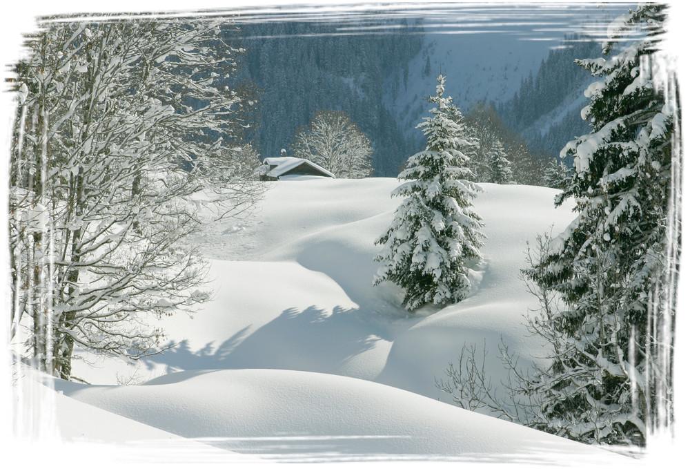 After the Snowfall.jpg