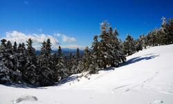 MOUNT PARNASSOS SNOW