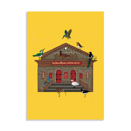 The Booth Museum, Art Print