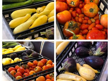SJCS Holds Farmers Market for Community Diners