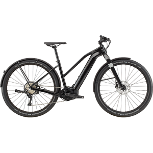 Cannondale Canvas Neo Remixte 1