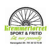 kremmer2020b.png