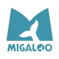 Team Migaloo - Regio Zwolle