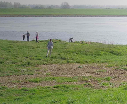 Adoptie IJsseloevers - Rheden