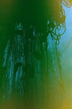 Mariana_Moraes_Fasching_Convocatória_Galeria_NIKON_Descortinando_paisagem_01.jpg