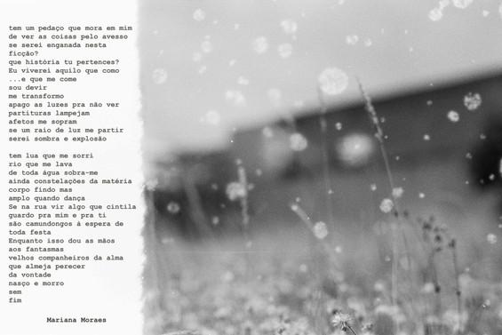 marcador peça poema