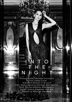 In-to-the-Night-by-Michael-Guichard_cover