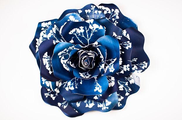 cyanotype, flower, sculpture