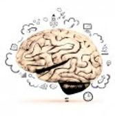 Cerveaux d'Ados