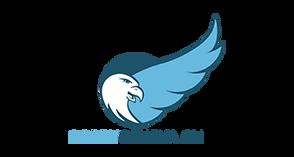 Logo SorryGeneva