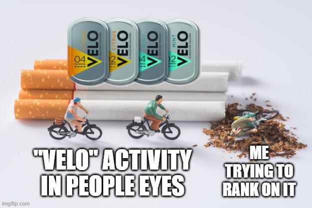 Meme Veloy by Wix SEO
