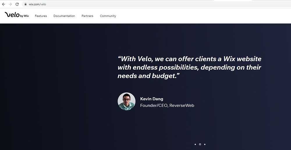 Kevin Dang | CEO & founder de Reverseweb | Velo by Wix
