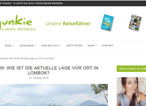 The interview with Indojunkie is online!Das Interview mit Indojunkie ist online!