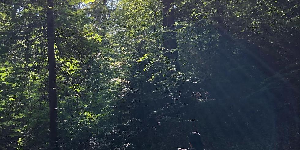 FLOW YOGA an der Waldquelle mit Frühstück