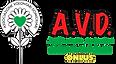 avd-logo5.png