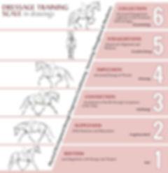 training scale.jpg