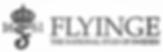FLYINGE LOGO.png 2015-2-2-16:6:42