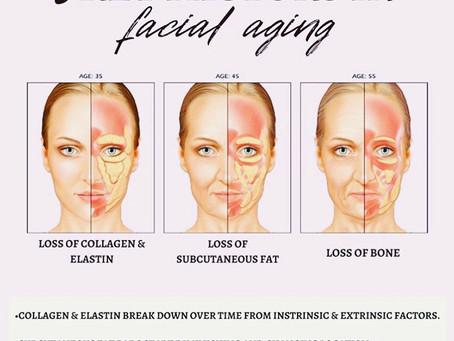 Botox vs. Skin Rejuvenation