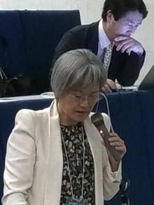 Palestrante no 27 Encontro Anual da Sociedade Japonesa do Bi-Digital O-Ring Teste, na Universidade d