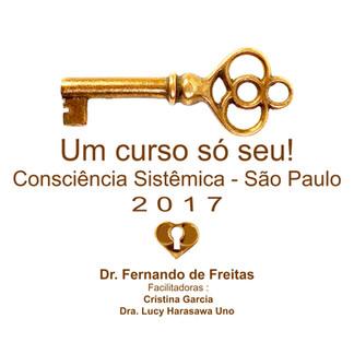 Consciência Sistêmica - Fernando de Freitas - 2.017