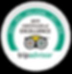 Certificados-TA-Alma_2019.png