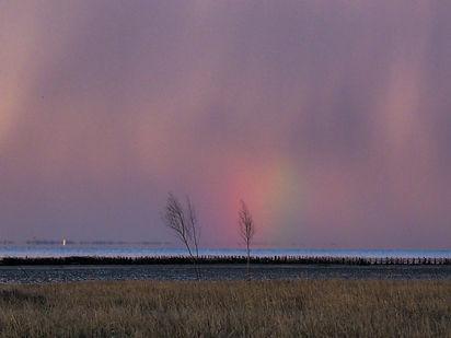 Regnbue-morgen.jpg