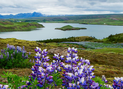 Island i blåt.jpg