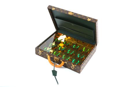 Mallette LV Emerald, 2020
