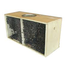 Packages or NUCs?
