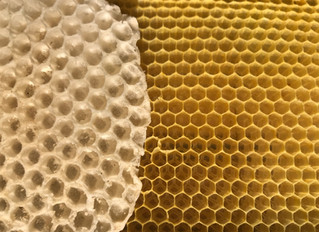 Are small cell bees better?