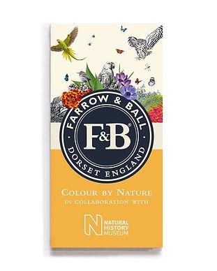 Farrow & Ball, Illusionist concept store, Saint Etienne, Nuancier, peinture, couleur, nuancier farrow & Ball