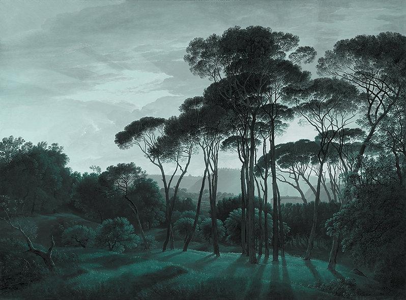 papier-peint-panoramique-cole & son- Illusionist Concept Store-Saint Etienne