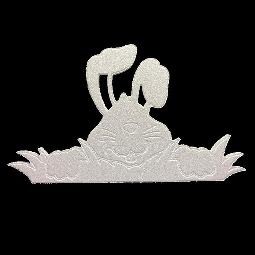 Conejo Saliendo de la Grama