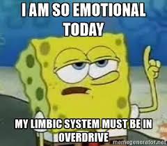 The Limbic Brain