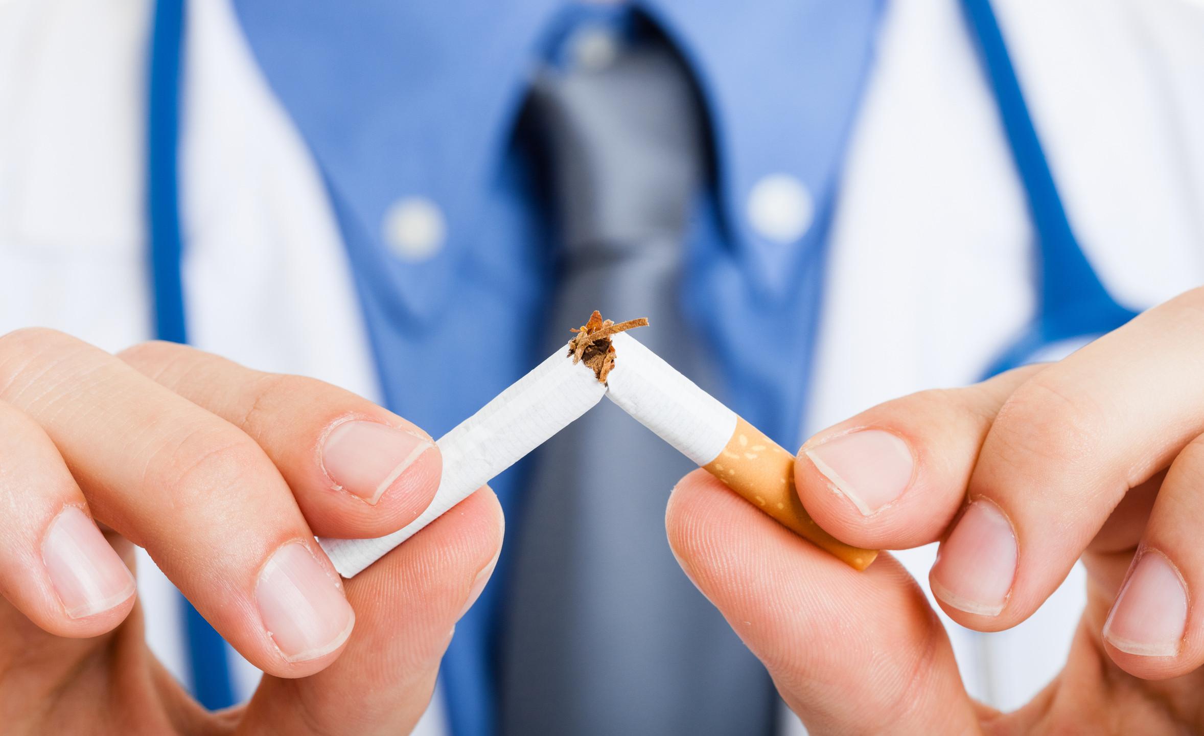 1. Fumo