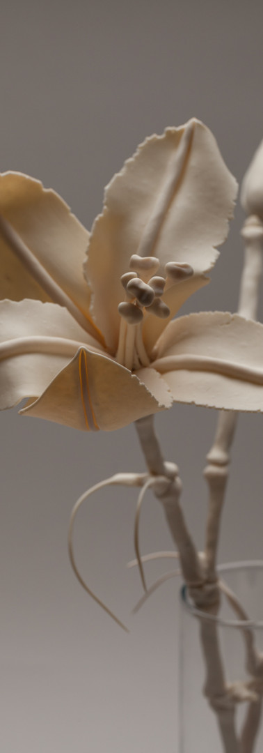 Bone Lilies