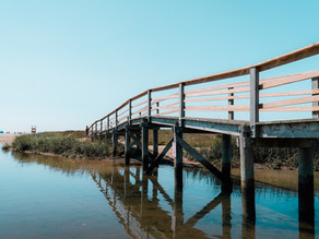 Cape Cod Beaches This Fall: What's Open to the Public