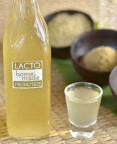 LACTO-LIFE - Life with homemade Probiotics
